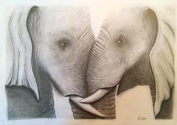Drawing: Elephants Embrace