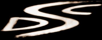 sdc logo small version_edited.png