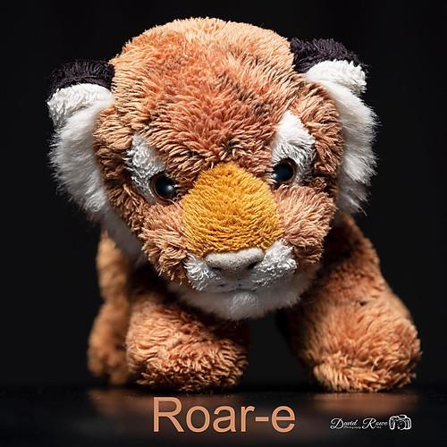 Roar-e's iPhone Adventures
