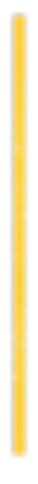 yellow strip-07.png