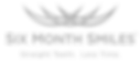 6MS_Logo1_gray.png
