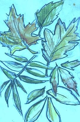 treetalk_edited.jpg