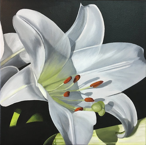 Lily #2