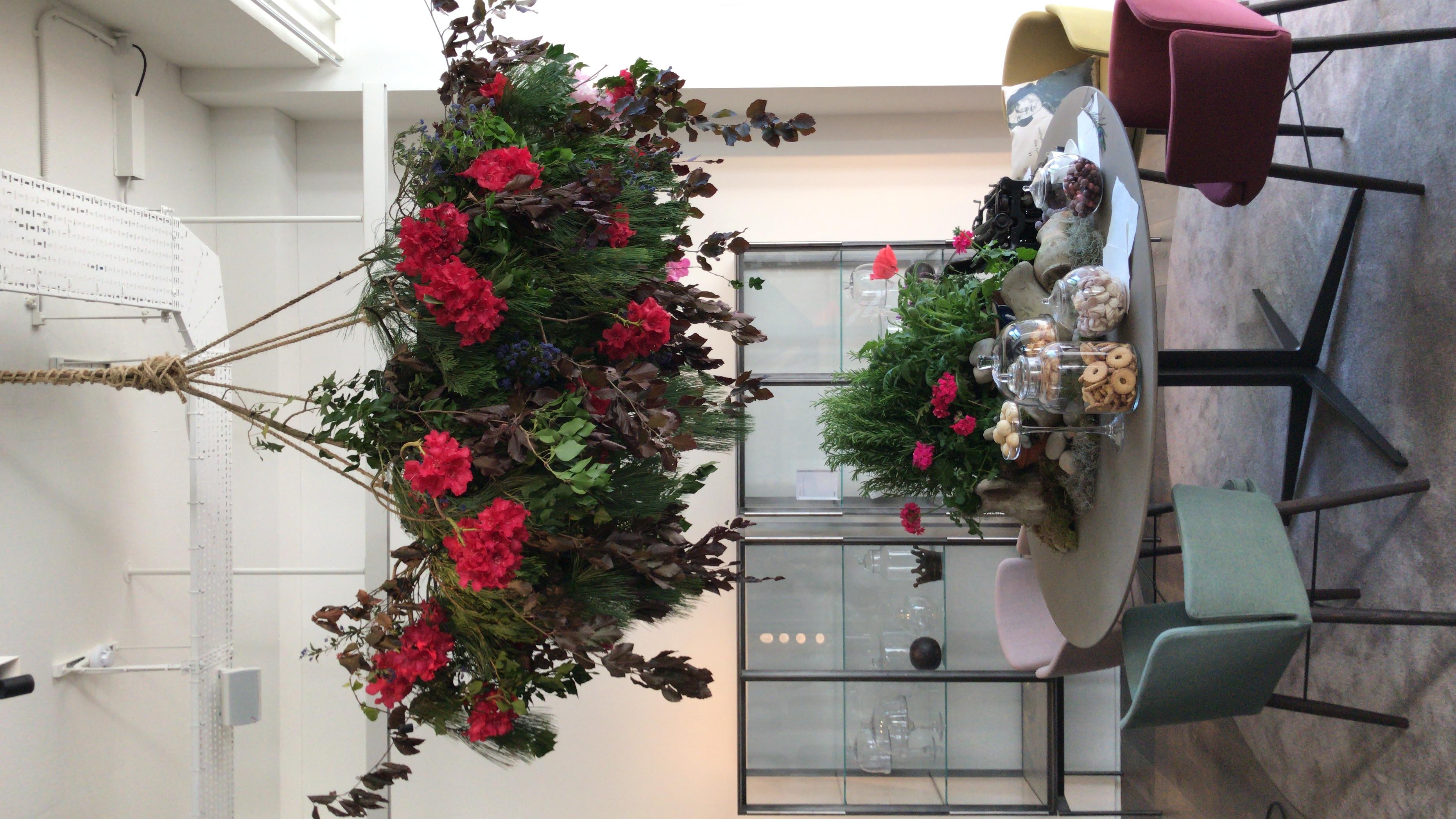 Lema-Chelsea flower show