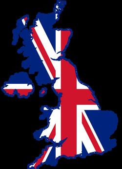 2019 Team UK Flag 1