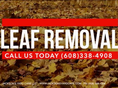 J.Y.C Leaf Removal Service