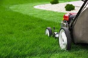 mowing.jpeg