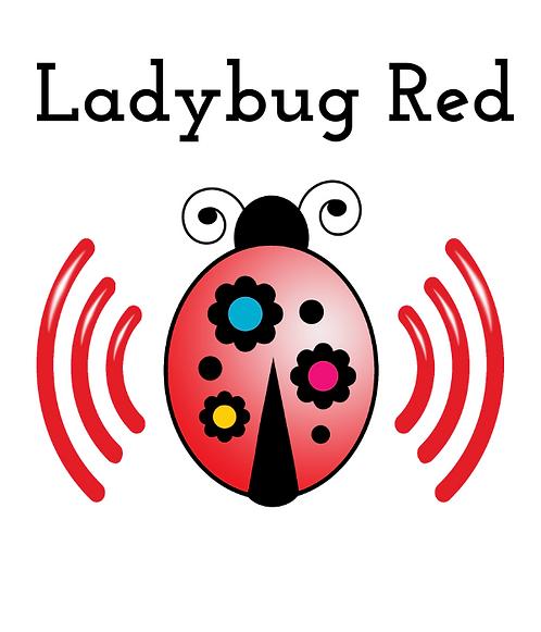 Ladybug Red Internet Start Package