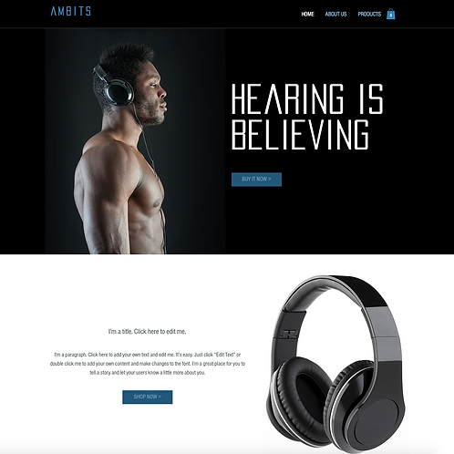 Premade Audio Store Web Design Package
