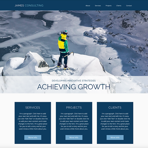 Premade Business & Consultant Web Design Package