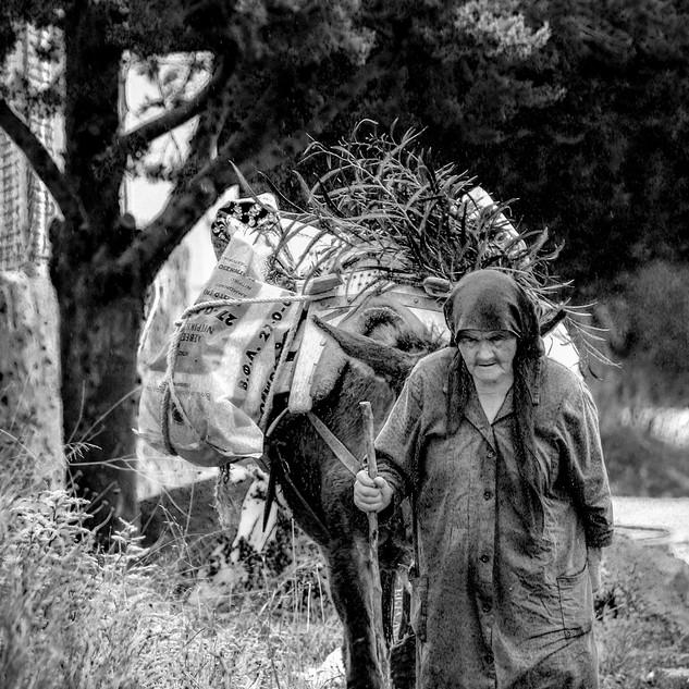Kreta vrouw met ezel