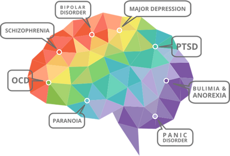 brain geometrics