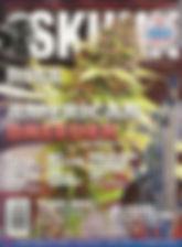 SKUNK Laceface.jpg