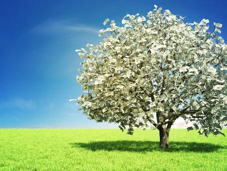 """The money tree was found..."""