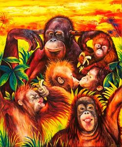 The Humour of the Orangutans