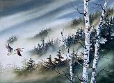 Misty Mountains & Birch