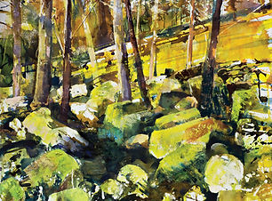 Autumn trees limestone boulders sml.JPG