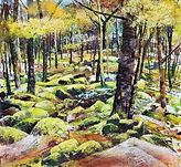 Expressive Rocks & Trees