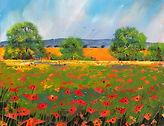 Poppy Field of Dreams