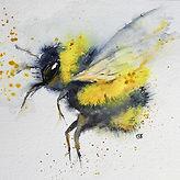 A Buzzing Bee