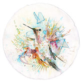 Energetic Hummingbird