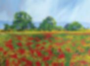 poppyfield-of-dreams.jpg