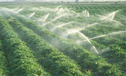 Yağmurlama,Damlama Sulama Sistemleri