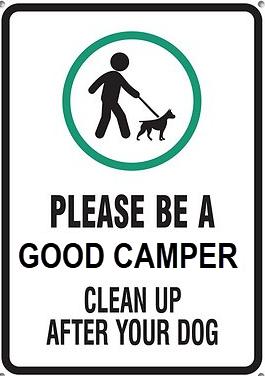 Good Camper.png
