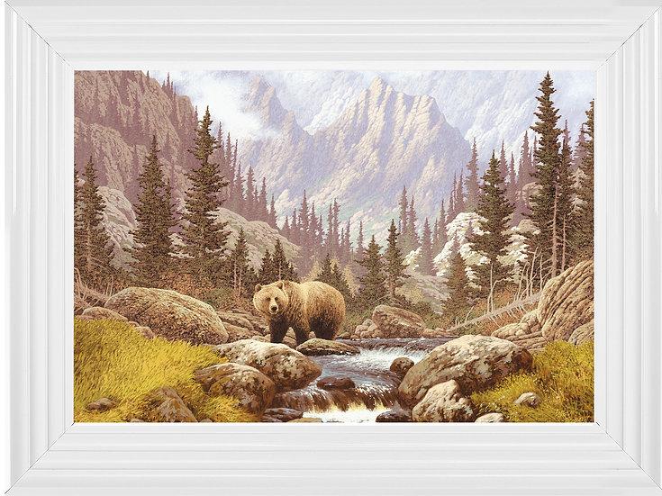 Wondering Brown Bear