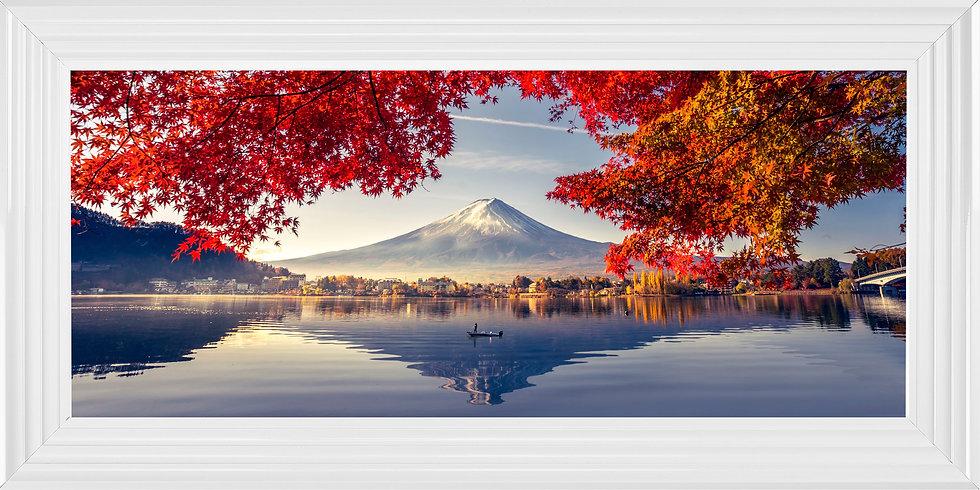 Acer of Mount Fuji