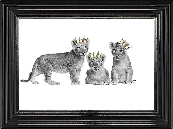 Royal Cubs
