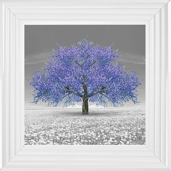 Cherry Blossom Tree Purple