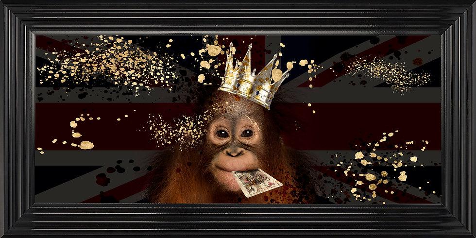 Cheeky King Chimp
