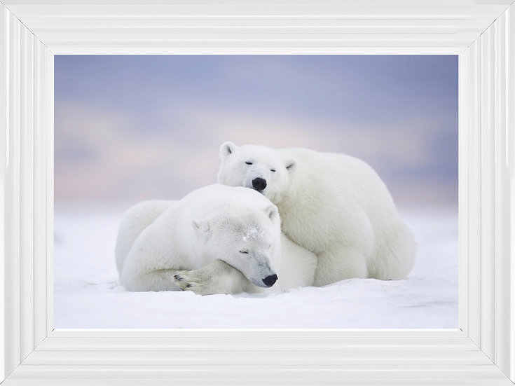 Polar Embrace
