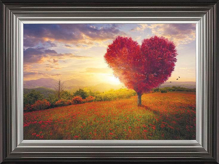 Sunshine of my Heart