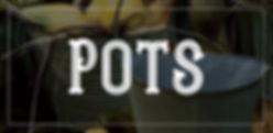 Plus One Imports Pots