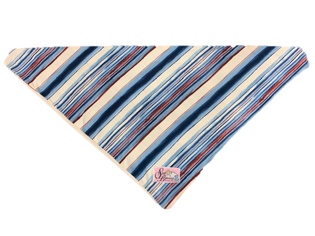 Preemie Blue Wrappable BR.png