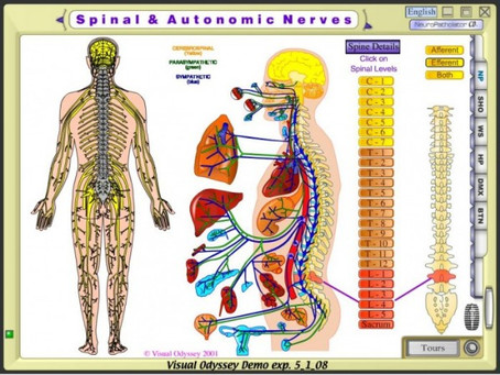 Winsor Autopsies
