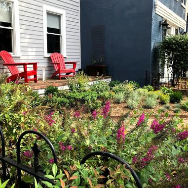 Beautiful and colorful full-sun garden