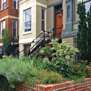 Bountiful front-yard landscape with featured native plantings