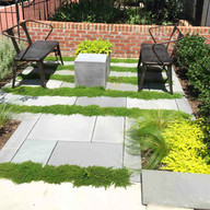 Modern plantings within cut slate