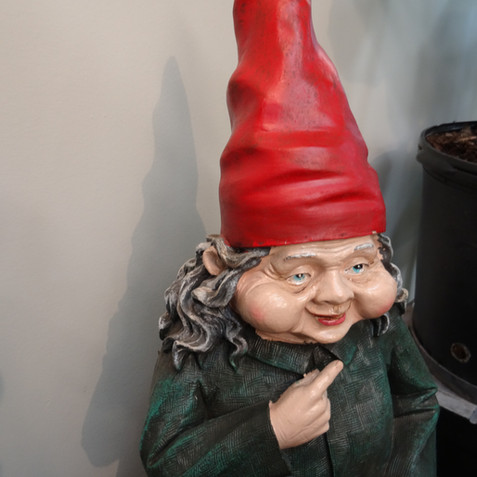 Gnome - the keeper of the garden