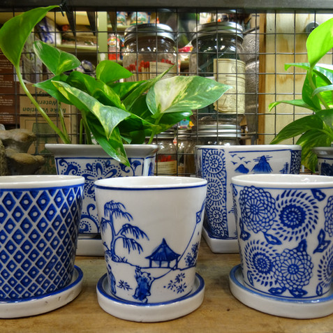 Japanese planters