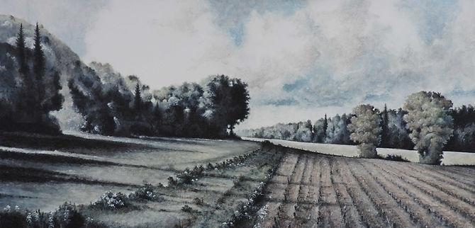 """Kleinburg Cut FieldSOLD 24"""" x 48"""" tempera on canvas, unframed."""