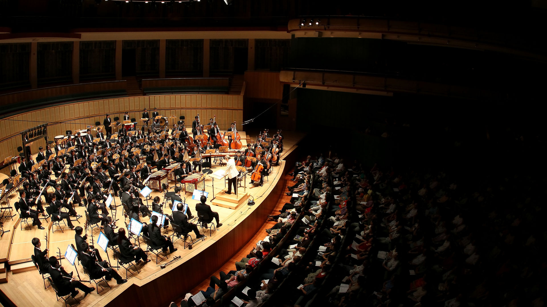 Photo - Orchestra - 5-DPP_0158.JPG