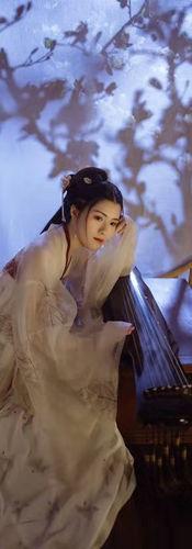 7.3.2 Performer 2 - 《三国演艺》 - Guqin 古琴 -