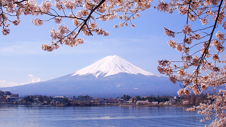 Lake_Kawaguchiko_Sakura_Mount_Fuji_3_edited