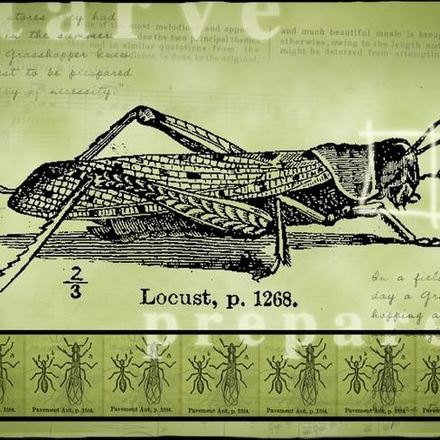 WP_science_aesop_ant_grasshopper.jpg