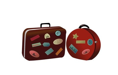 washingtonpost_luggage_vector.jpg