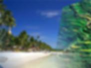 philippines-web-Banner (1).jpg